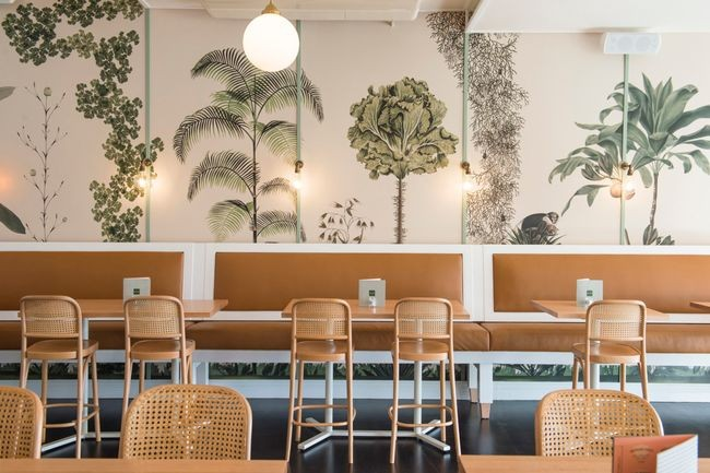 Rattan for Modern Cafe Why not