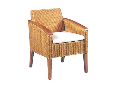 Cassandra Rattan Arm Chair