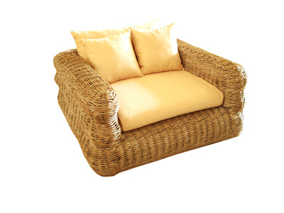 Sunny Arm Chair