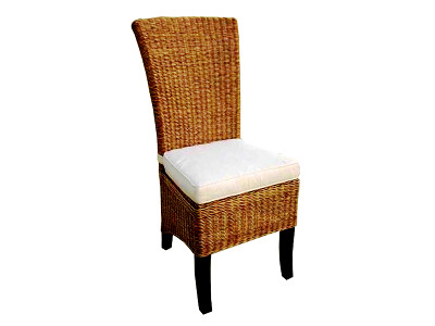 Tropical Rattan Chair